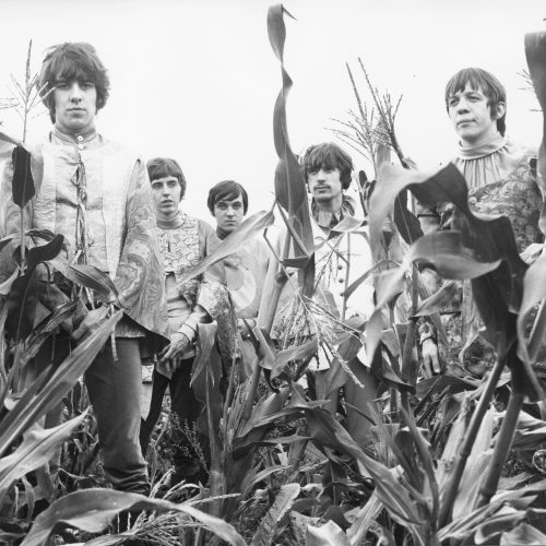 Band members in corn field